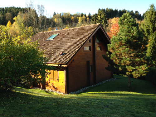 Chalet Gerardmer - 8 people - holiday home  #51436