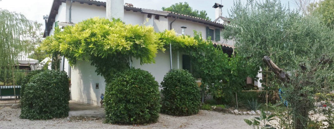 Farm Rimini - 9 people - holiday home  #51515