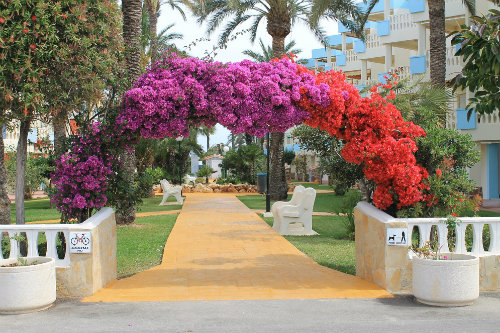 Flat in Denia - Vacation, holiday rental ad # 51533 Picture #4