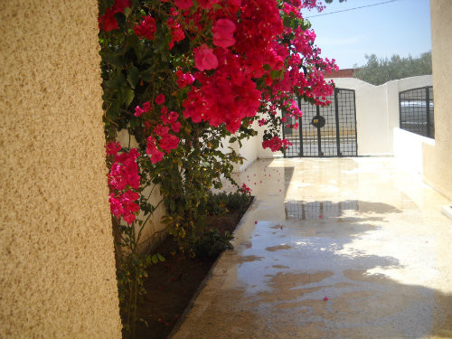 House Sousse - 2 people - holiday home  #51719