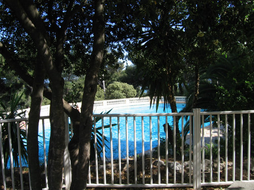 Studio in Hyères - Vacation, holiday rental ad # 51720 Picture #2