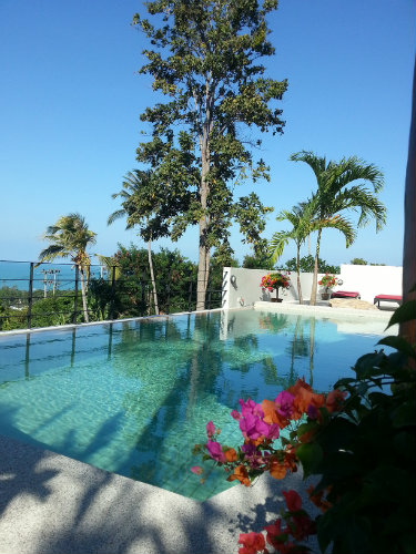 House in KOH SAMUI - Vacation, holiday rental ad # 51835 Picture #3