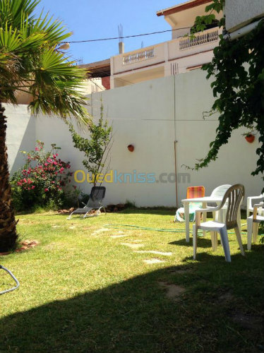 Maison Tipaza - 8 personnes - location vacances  n°52236