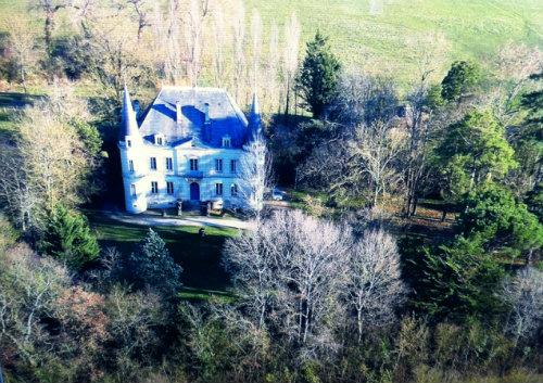 Château Niort - 12 personnes - location vacances  n°52302