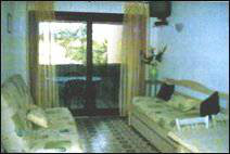 Studio in Calcatoggio - Vacation, holiday rental ad # 52317 Picture #2
