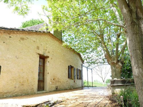Gite Montauriol - 6 personnes - location vacances  n°52635