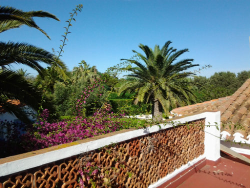 House in denia - Vacation, holiday rental ad # 52637 Picture #2