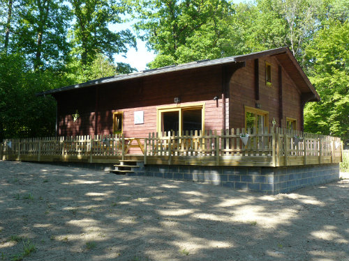 Chalet Cerfontaine - 15 people - holiday home  #52658