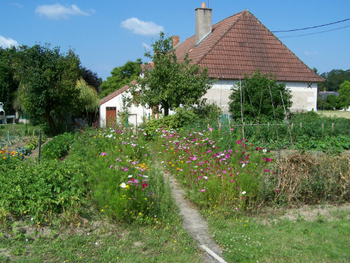 Gite Rilly Sur Loire - 8 people - holiday home  #52737