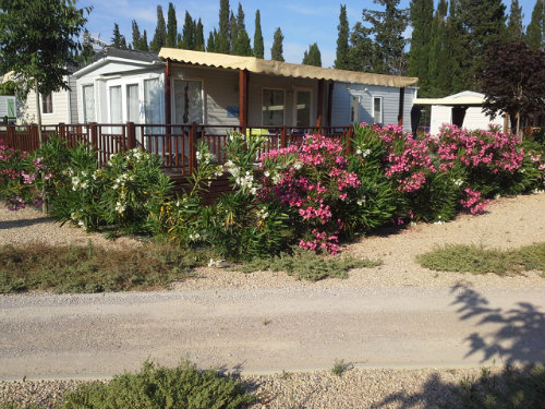 Mobile home Frejus - 6 people - holiday home  #52858