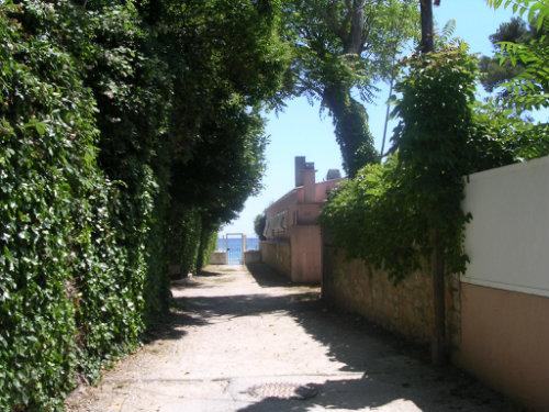 Flat 4 people La Seyne Sur Mer - holiday home  #53317