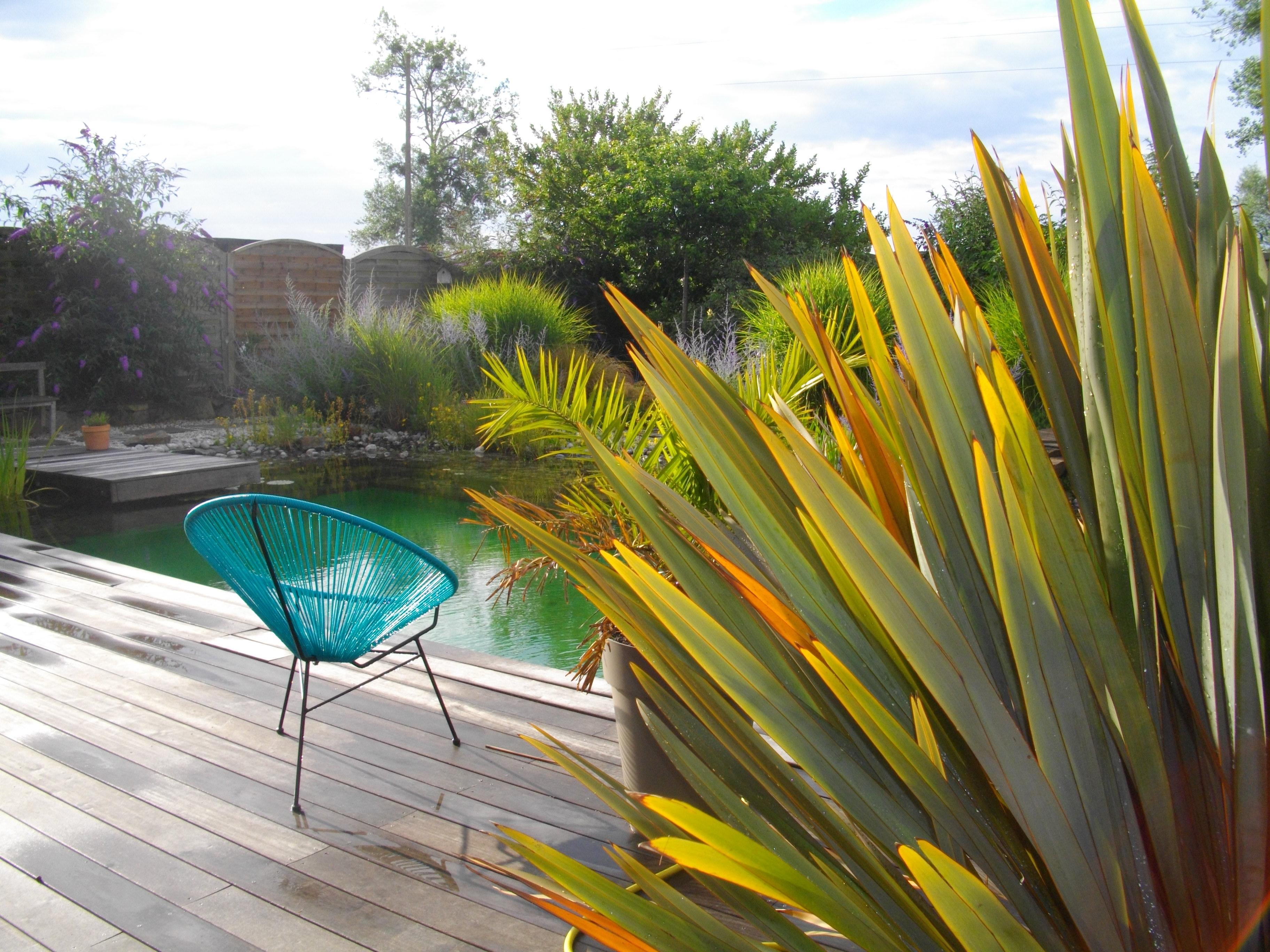 Gite La Fresnais - 4 people - holiday home  #53414