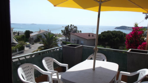Flat 8 people Six Fours Les Plages - holiday home  #53632