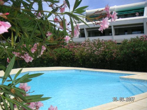 Appart Rdc+Jardin+Piscine