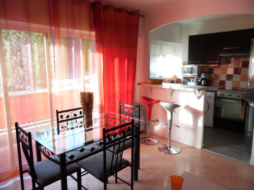Flat Cannes - 4 people - holiday home  #53831