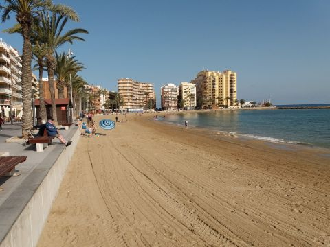 Flat in Torrevieja - Vacation, holiday rental ad # 53848 Picture #1