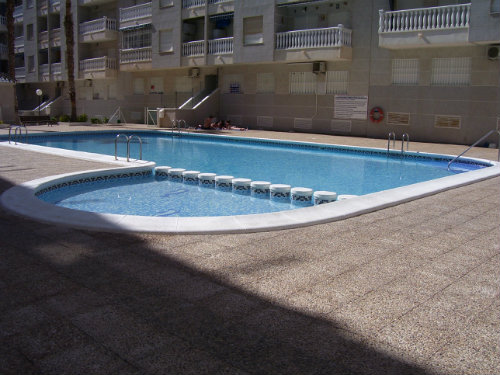 Flat in Torrevieja - Vacation, holiday rental ad # 53848 Picture #6