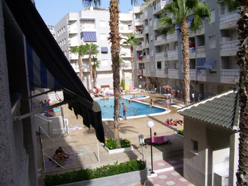 Flat 6 people Torrevieja - holiday home  #53848