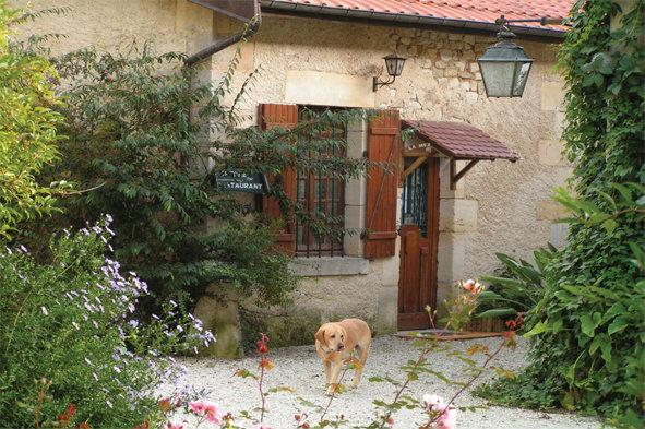Appartement Chaumont Sur Aire - 4 personnes - location vacances  n°54043