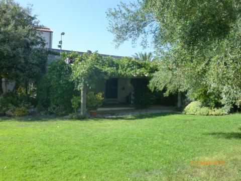 Maison Sassari - 5 personnes - location vacances  n°54108