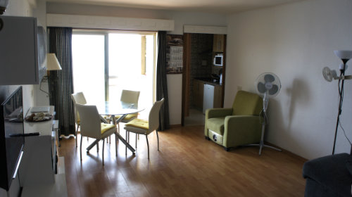 Flat in Almunecar - Vacation, holiday rental ad # 54173 Picture #7