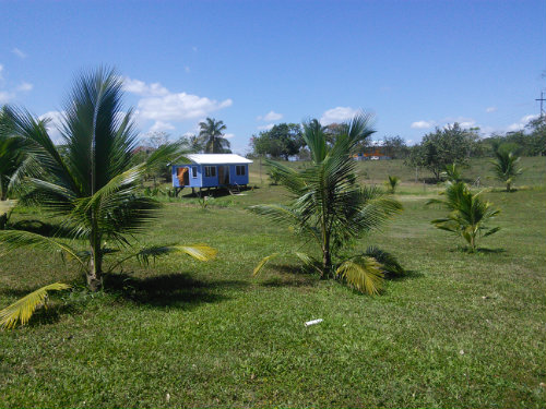 Studio in San Ignacio - Vacation, holiday rental ad # 54325 Picture #5 thumbnail