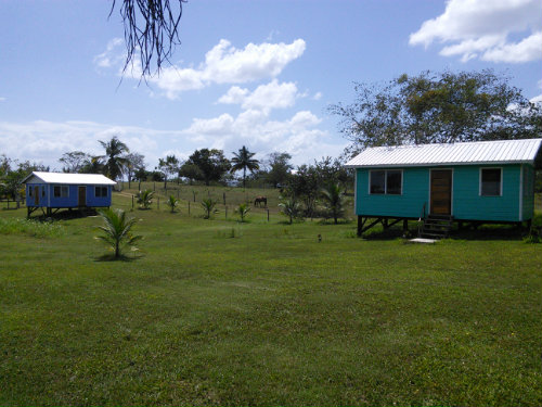 Studio in San Ignacio - Vacation, holiday rental ad # 54325 Picture #8 thumbnail