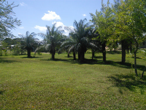in San Ignacio - Vacation, holiday rental ad # 54328 Picture #3