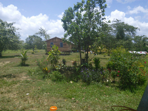 in San Ignacio - Vacation, holiday rental ad # 54328 Picture #6