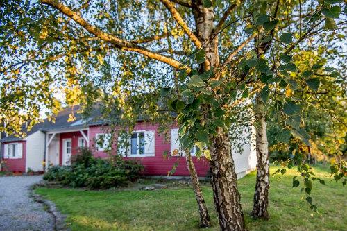 Chambre d'hôtes Petit Mars - 2 personnes - location vacances  n°54425