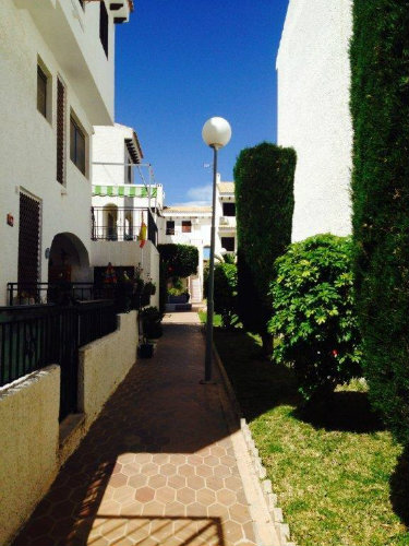 Flat in Torrevieija - Vacation, holiday rental ad # 54511 Picture #6