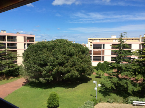 Flat in Saint Cyprien-plage - Vacation, holiday rental ad # 54541 Picture #10