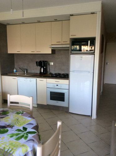 Flat in Saint Cyprien-plage - Vacation, holiday rental ad # 54541 Picture #5