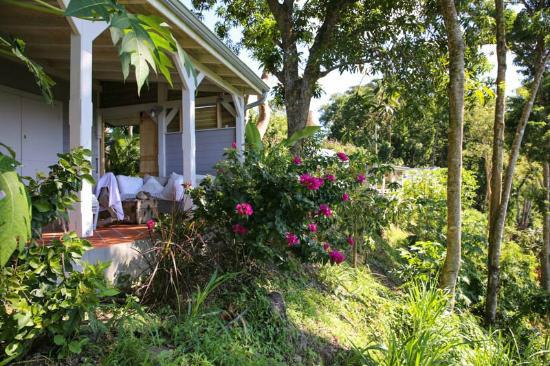 Gite Pointe Noire - 4 personnes - location vacances  n°54566