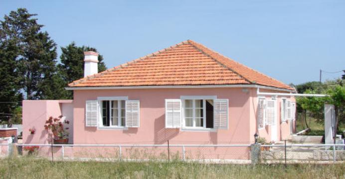 House Sestrunj Croatie - 6 people - holiday home  #54767