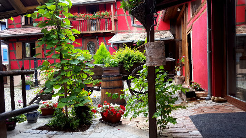 Gite Olwisheim - 8 personnes - location vacances  n°54797