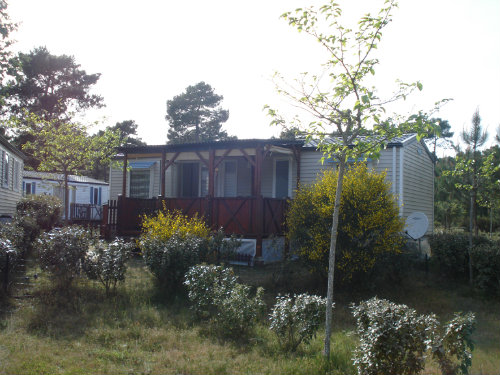 Mobile home Lacanau Océan - 6 people - holiday home  #55098