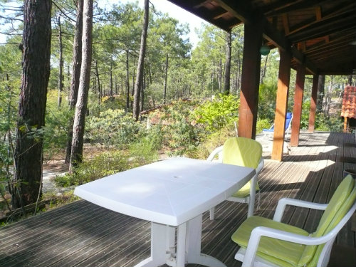 Chalet in Carcans-Maubuisson - Vacation, holiday rental ad # 55303 Picture #1