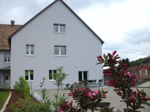 Gite Reipertswiller - 6 personnes - location vacances  n°55334