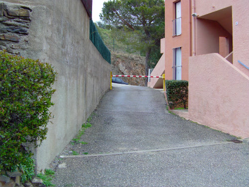 Appartement à COLLIOURE - Location vacances, location saisonnière n°55339 Photo n°9 thumbnail