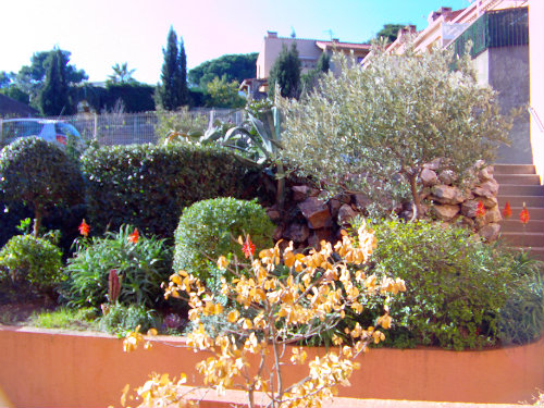 Flat Collioure - 4 people - holiday home  #55339