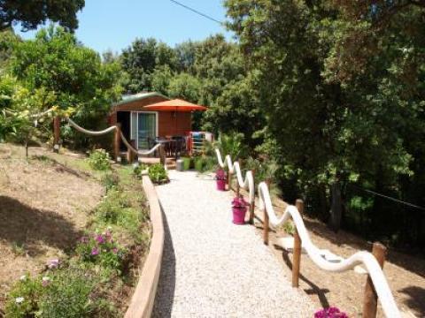 Chalet Porticcio - 4 personnes - location vacances  n°55392