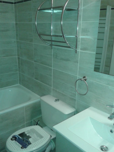 Studio in Les mathes - Vacation, holiday rental ad # 55397 Picture #0