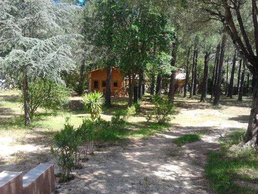 Chalet Ste Lucie De Porto-vecchio - 3 personnes - location vacances  n°55657