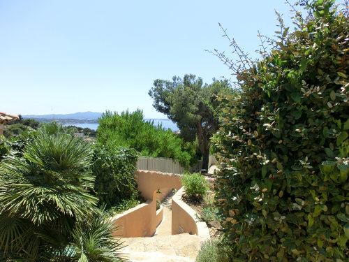 House in Bandol - Vacation, holiday rental ad # 55684 Picture #13