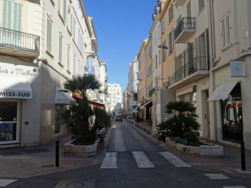 Flat Cannes - 4 people - holiday home  #55746