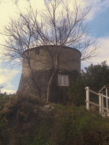Huis Cervione - 4 personen - Vakantiewoning  no 55788