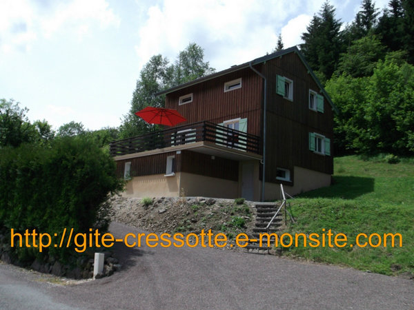 Chalet Plancher Les Mines - 8 people - holiday home  #55860