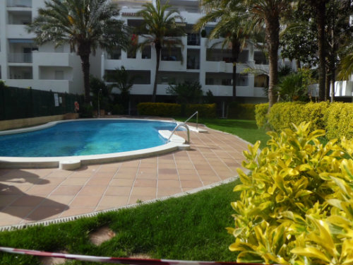 Flat in rosas  - Vacation, holiday rental ad # 55951 Picture #4