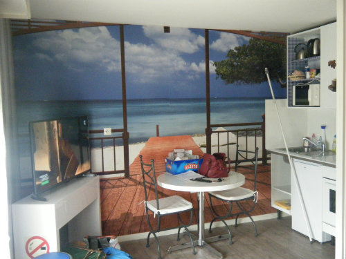 Studio in Berck-sur-mer - Vacation, holiday rental ad # 56315 Picture #2